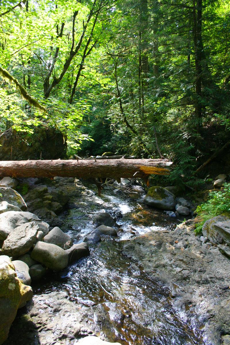 Multnomah-Creek