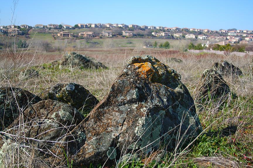 Nature-rocks