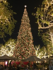 Christmas tree at the Grove
