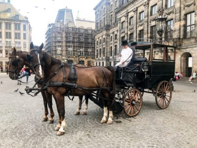 Horse and carriage on cobbled streets